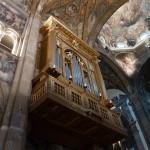 Northern Italy photo - church organ