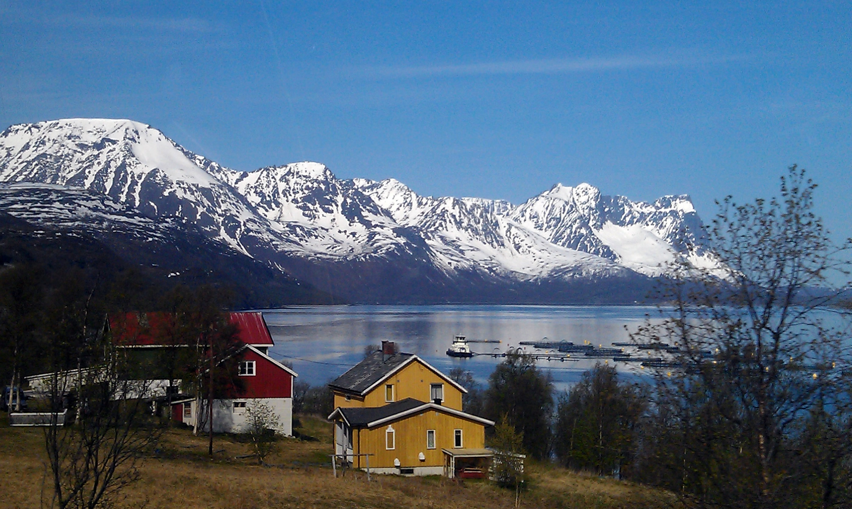 Norway In The North Europe Pictures